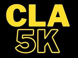 Virtual 5K Logo