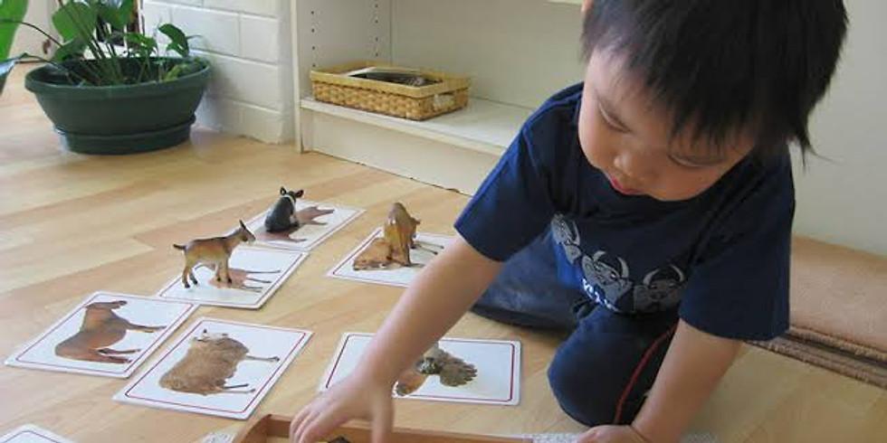 Establishing Authentic Montessori Nurseries