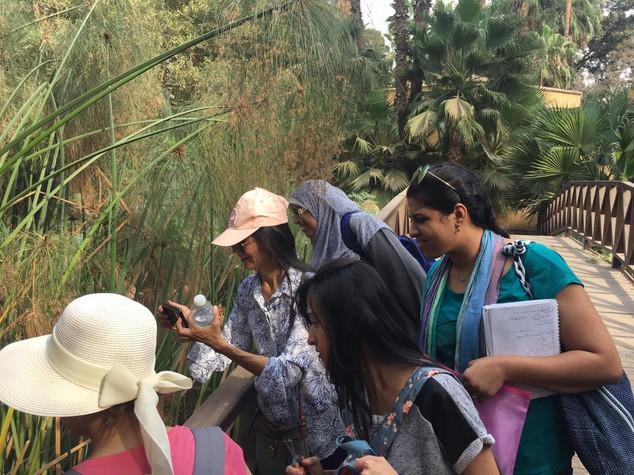 AMI Primary Diploma Course - Botany Walk