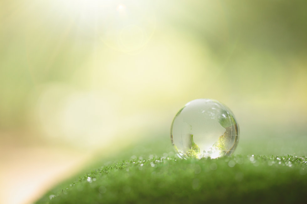 close-up-crystal-globe-resting-grass-for
