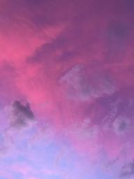 energy workers purple sky.JPG