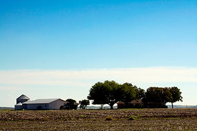 farm and field with big sky insurance ranch