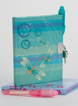 Dragonfly Journal and Pen