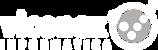 Viconex - Soluciones informatica