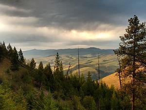 Missoula valley from University Mountain