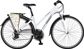 rower trekkingowy wypożyczalnia gdańsk
