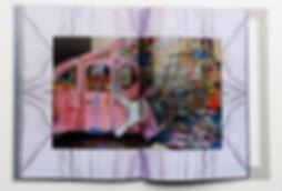 Guy Shoham Pink Lady_edited_edited_edited.jpg