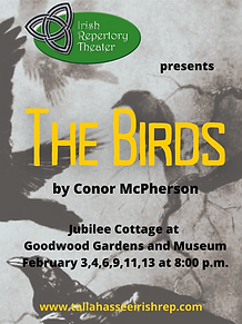 The Birds Posters.png