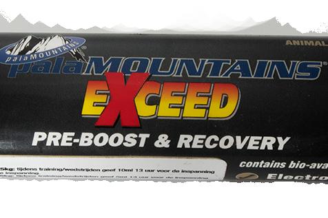 Exceed Pre Boost 80 ml Syringe