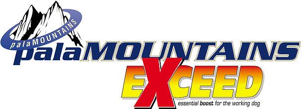 palaMOUNTAINS Exceed Logo (2).jpg
