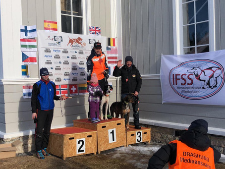 Team Palamountains goud op EK sledehonden rennen