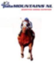 altijd palamountains paard.jpg