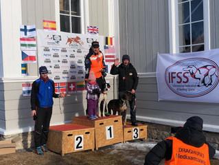 Nederland Europees kampioen sleehondenrennen