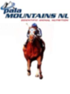 paarden Pala mountains.jpg