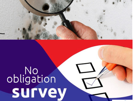 How We undertake our surveys ...