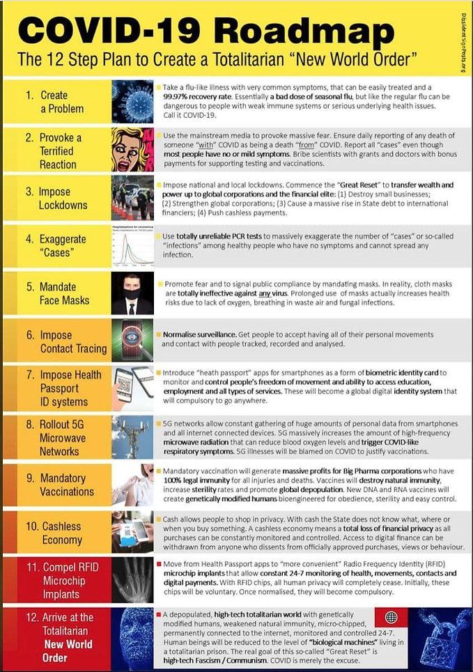 12 steps to NWO tyranny.jpg