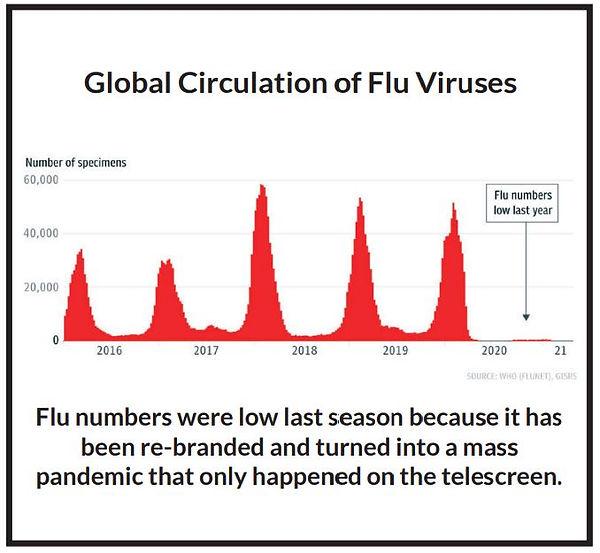 Flu numbers.JPG