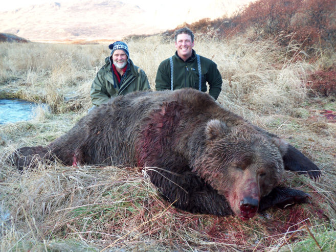 boone and crockett brown bear.jpe