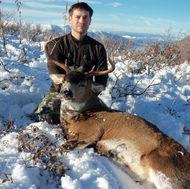Sitka blacktail deer snow.jpe