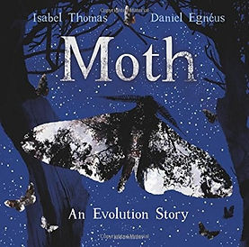 Moth - An Evolution Story