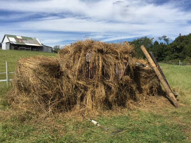 Ground Blind Brushed in With Hay Bales