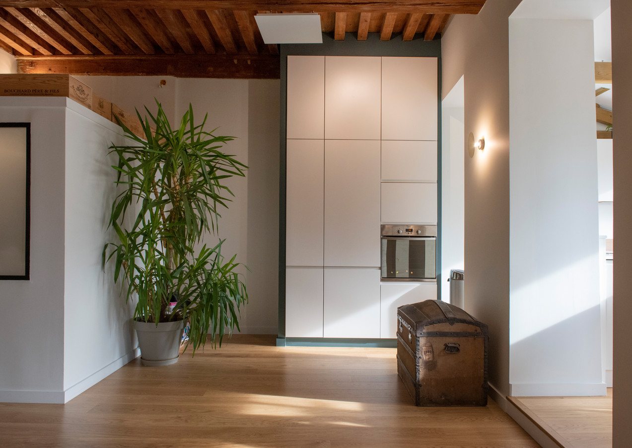 Carpe Diem 7 un appartement lyonnais par Rocamboles.jpg
