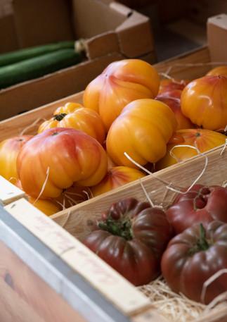 Tomates de saisons.jpg