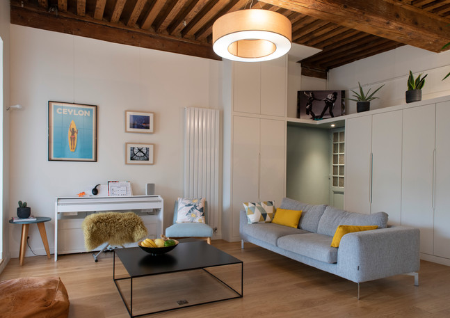 Carpe Diem 2 un appartement lyonnais par Rocamboles.jpg