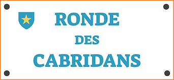 ronde-des-cabridans-immo-istres.png