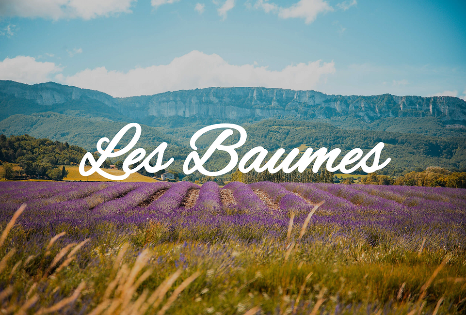 baumes.png