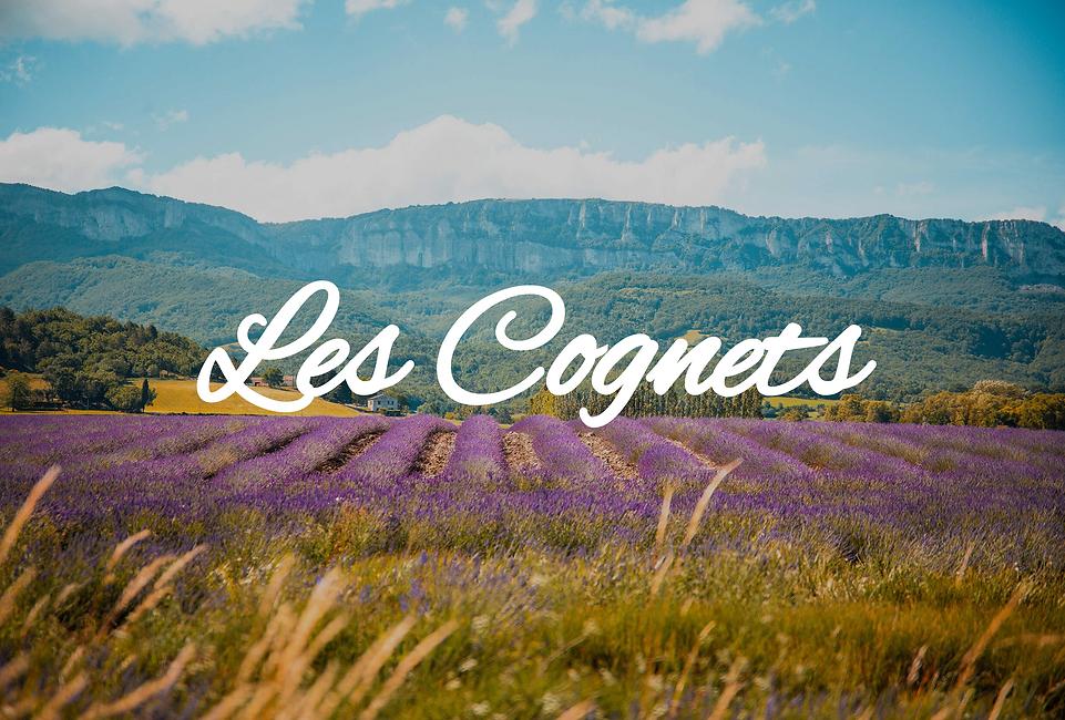 les cognets.png