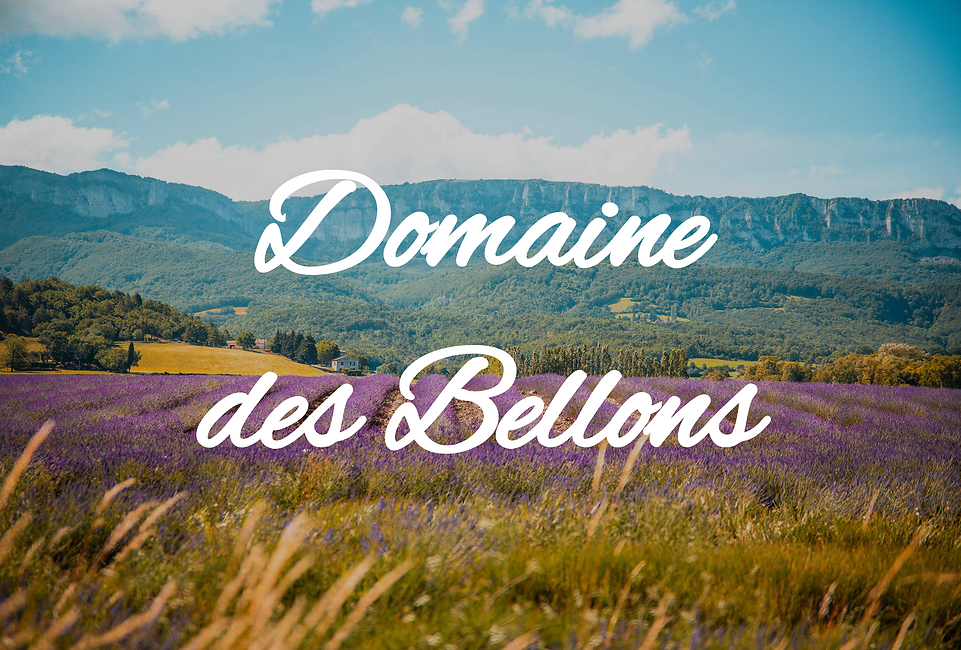 bellons-couverture-immo-istres.png