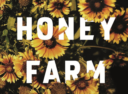 Hawkeye Pictures options 'The Honey Farm' by Harriet Alida Lye