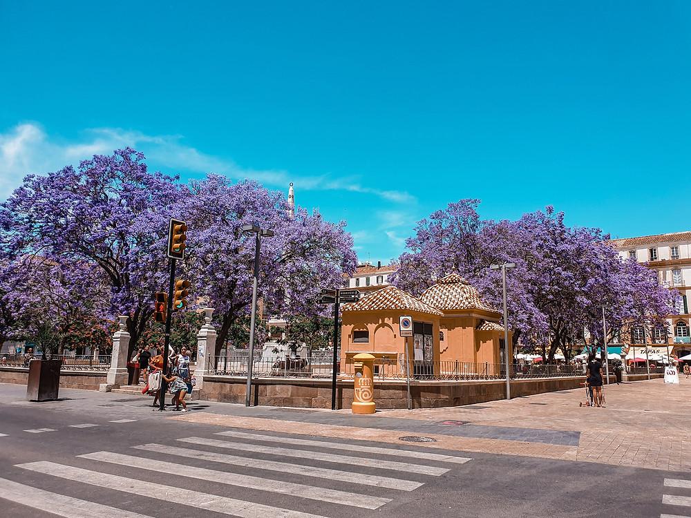 Plaza de la Merced Picasso