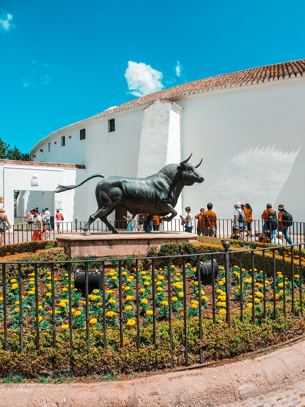 Ronda Plaza de Toro - Andalusien- Malaga - Olivia Libi