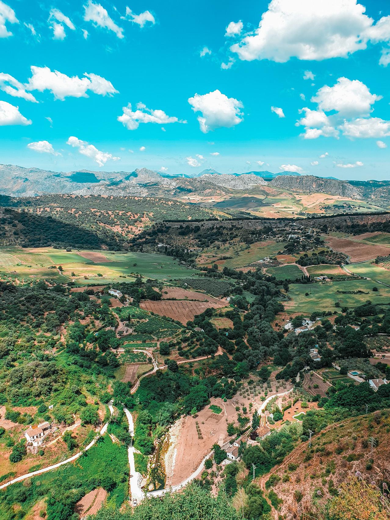 Ronda Valley - Andalusien- Malaga - Olivia Libi