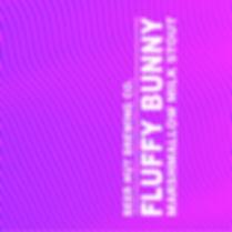 FLUFFY BUNNYsquare.jpg