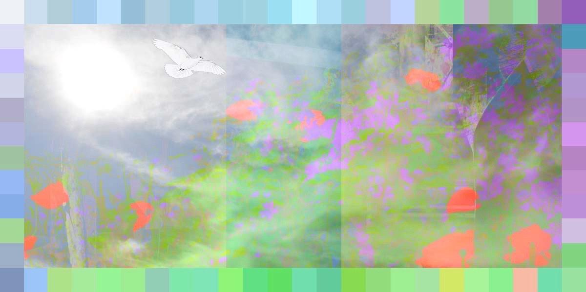 Image 28-07-2020 at 20.20.JPG