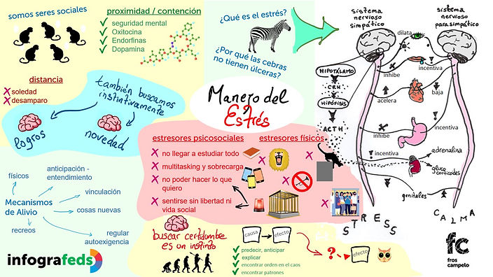 Infografed - Manejo del Estrés