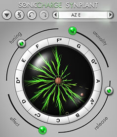 Synplant-3.jpg