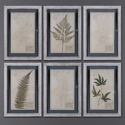 Ivory Frames With Herbs (set of 6)
