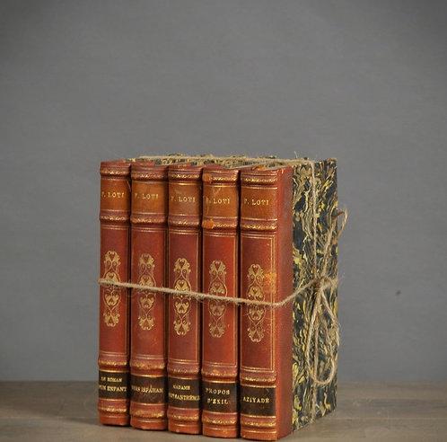 Brown Books (set of 5)
