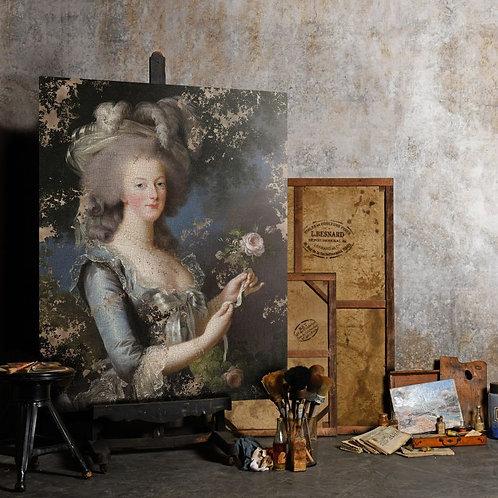 Portrait of Marie-Antoinette, Queen of France