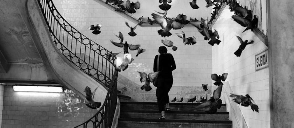 The Eye of the Century: Henri Cartier-Bresson