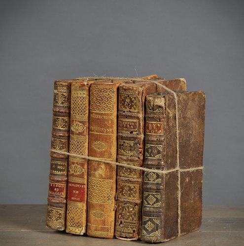 Antique Books (set of 5)