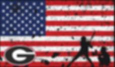 Baseball and Flag G.png