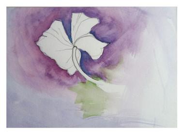 dying tulip, © 2008 Mike Sweeney