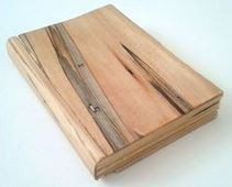 spalted elm and basswood: book of things we do not know