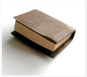 black walnut and basswood: book of things we do not know