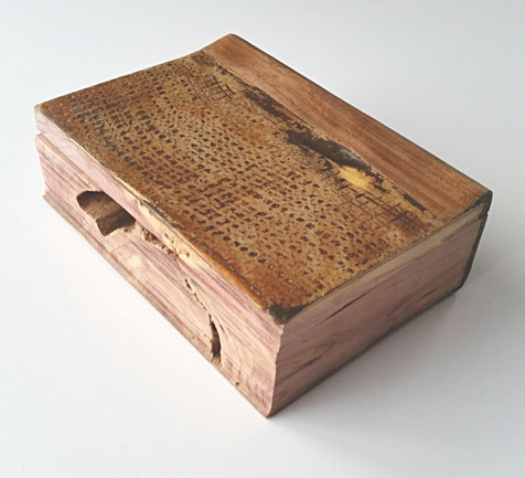 cedar, burlap, and elm: book of things we do not know